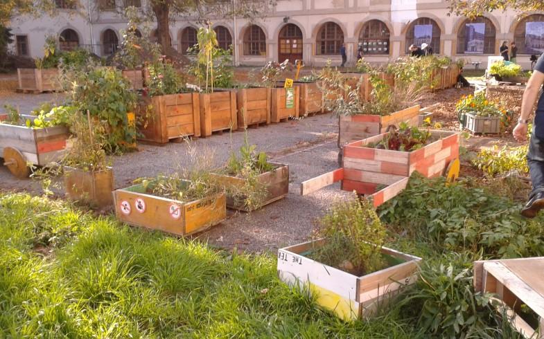 Urban Gardening Jour Fixe 1 / 2018