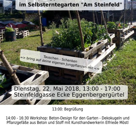 Jungpflanzenfest – Am Steinfeld
