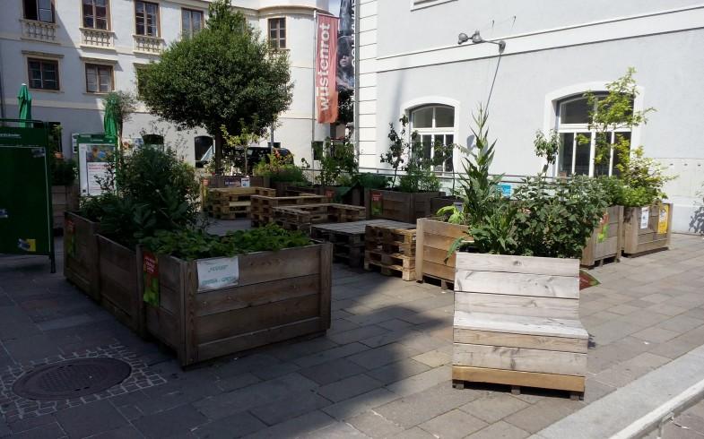 Grazer Urban Gardening Jour Fixe und Saatgutfest