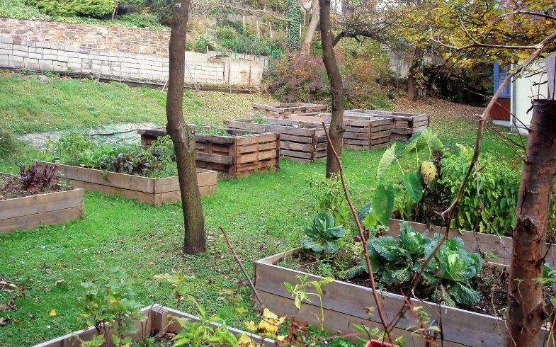 Vinzenz Muchitsch Garten