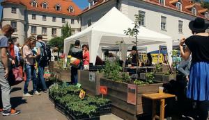 Transition Days 2018 @ Mariahilferplatz Graz | Graz | Steiermark | Österreich